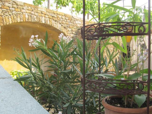 Flowers around the terrace