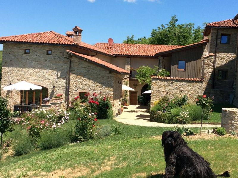 Merlin, our kind dog in front of Cascina Cerea