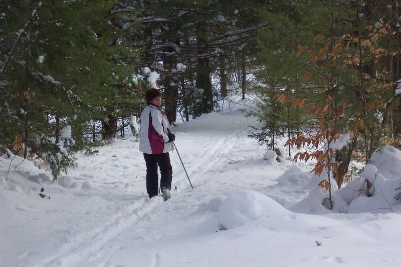 Many crosscountry ski and hiking trails direct access from cabin.