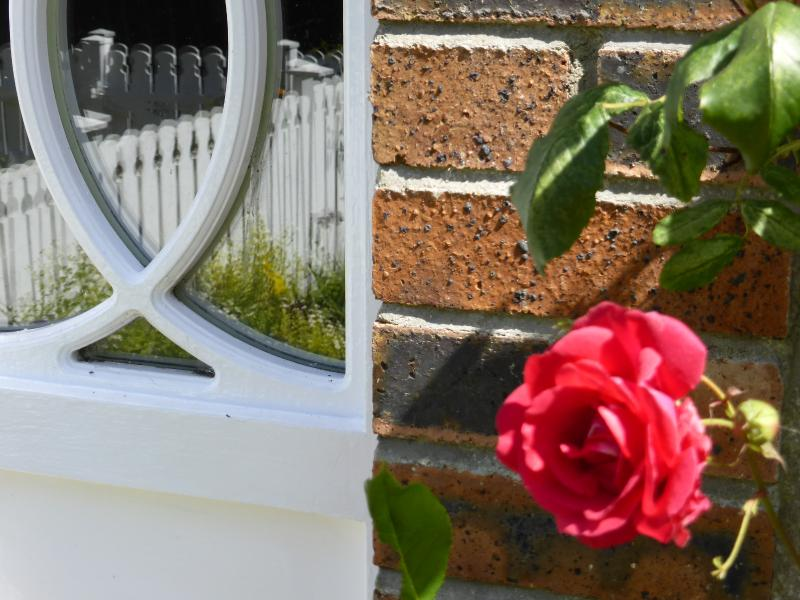 Summer blooms at Copperpot Cottage