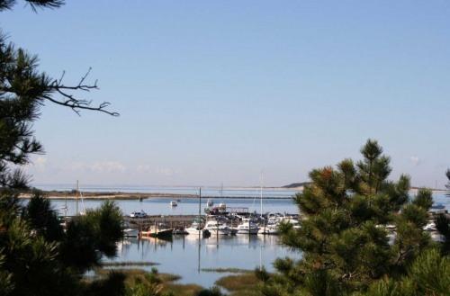 View of Wellfleet Harbor from master brd