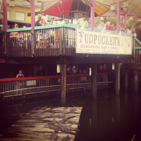 Fudpuckers' Gator Beach is always a fun night out for the family