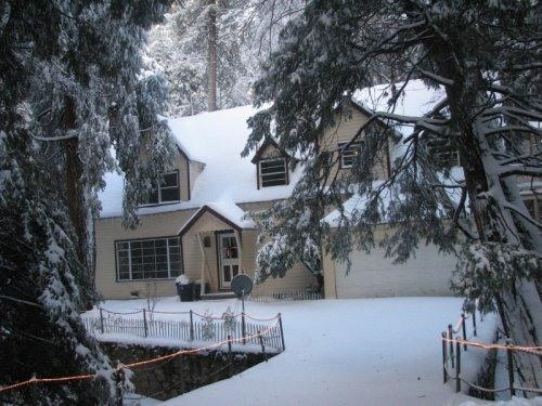 Winter at Granny Gert's Cabin