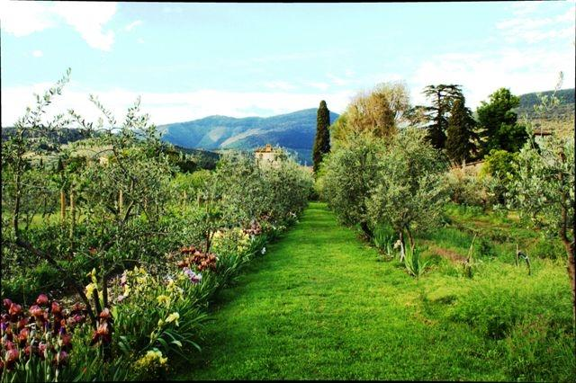 luxury apartments, garden, farm, Tuscany Villa, vacation rental in Sesto Fiorentino