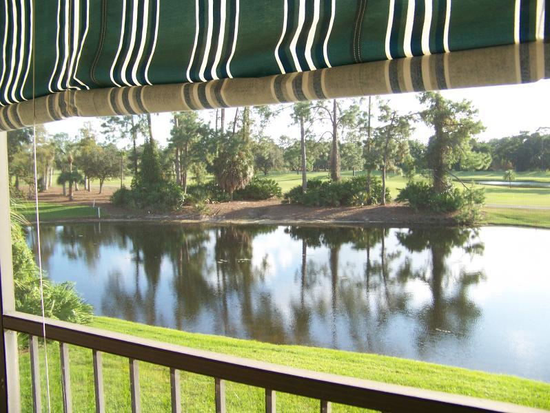 Lanai views of Eagles, fish and nature