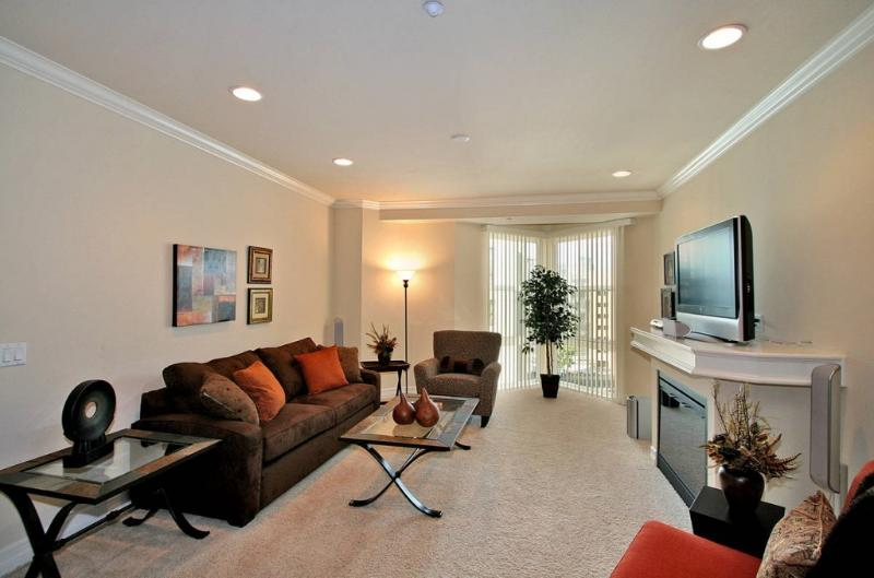 Spacious and airy living room, queen sofa-bed