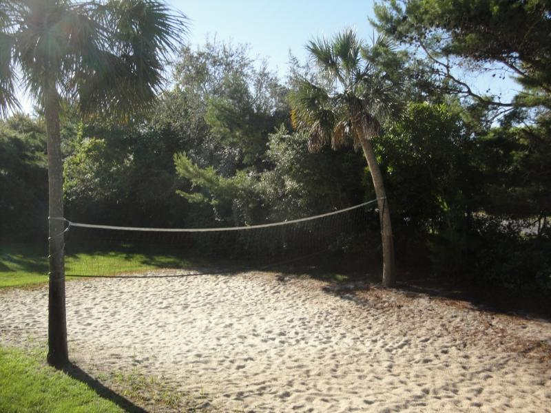 kids and adults love sand volleyball