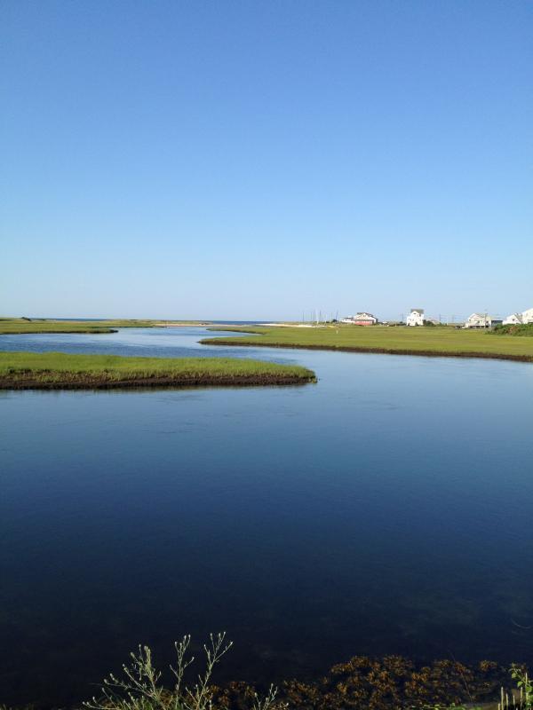 Swan River - 5 minuti a piedi