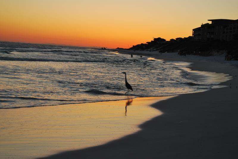 Seagrove Beach sunset.