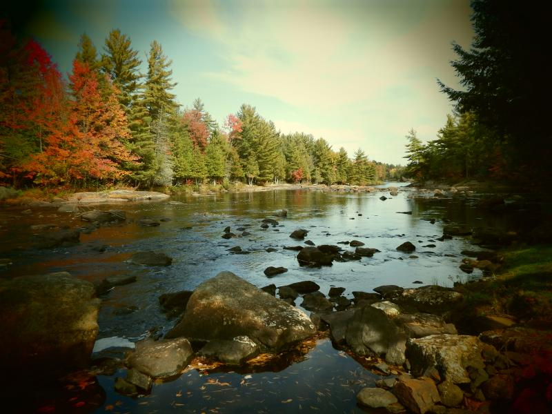 River at Cabin