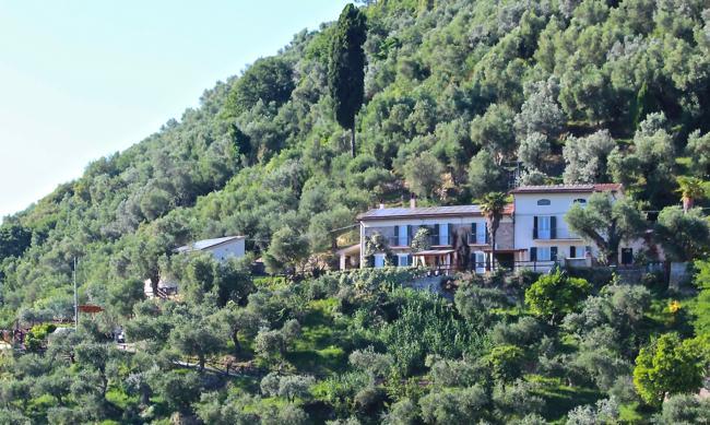 2 belas casas em um delicioso olival definição churrasqueira ao ar livre, excelente iluminação noturna!