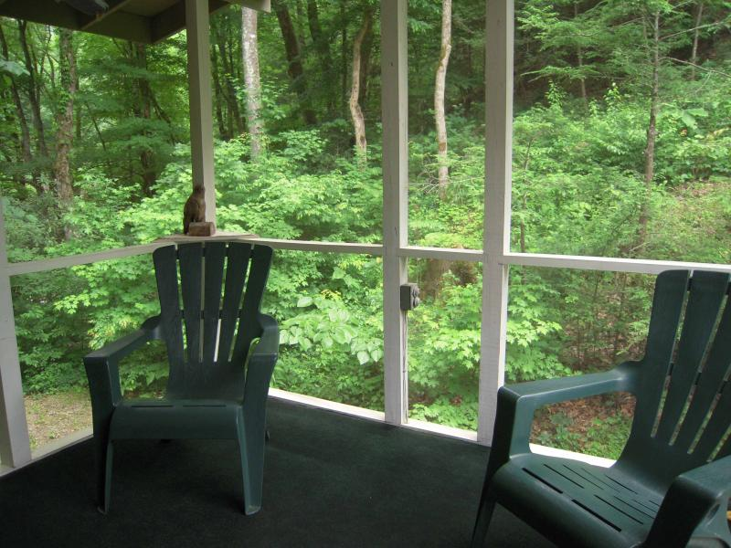 Large screened porch by the creek. Enjoy the creek year round