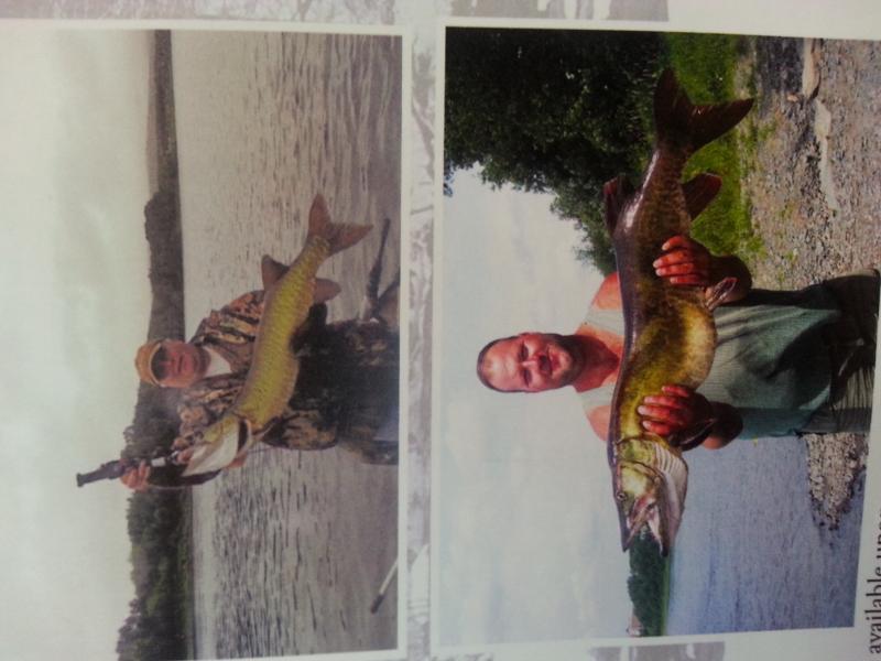 Fishing Big fish  St. John River