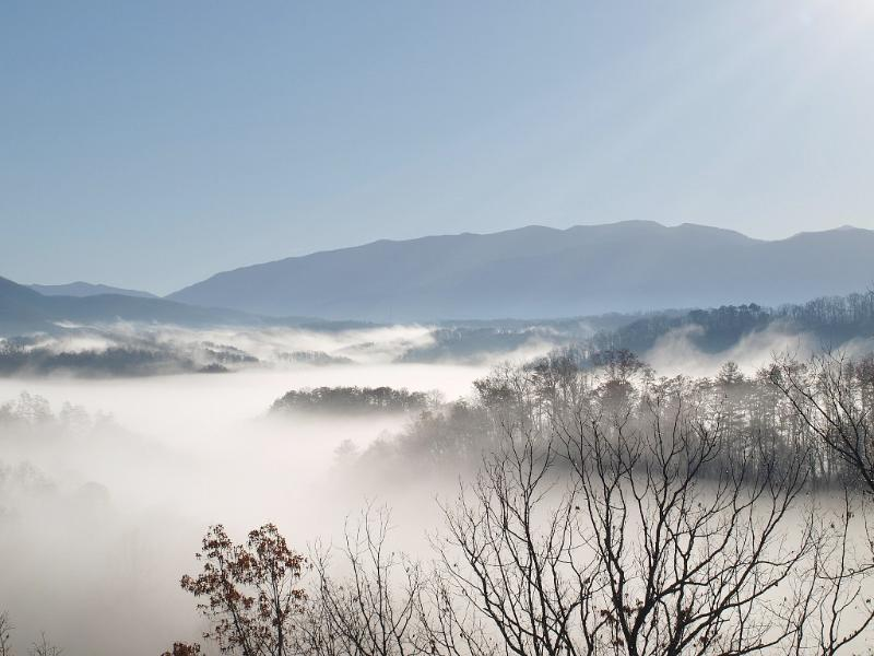 Real Smoky Mountain Viewing!!  Welcome to Moonstruck Lodge!