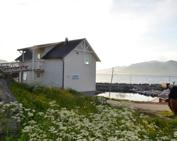 Storekorsnes Ferie & Fritid. Northern Light,Winter, aluguéis de temporada em Finnmark