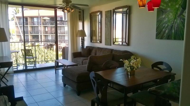 Living room and outside lanai