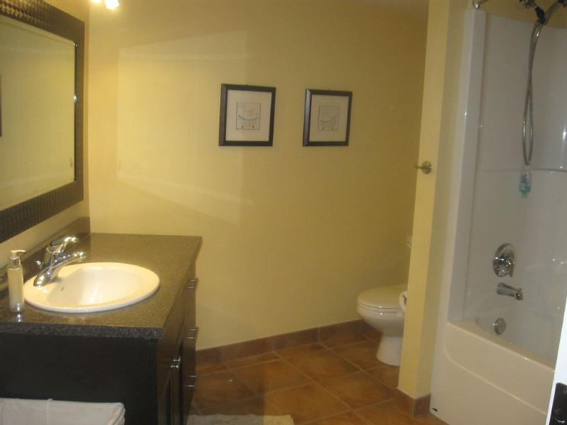 Spacious Restroom with Vanity, Tub, Shower, & Toilet