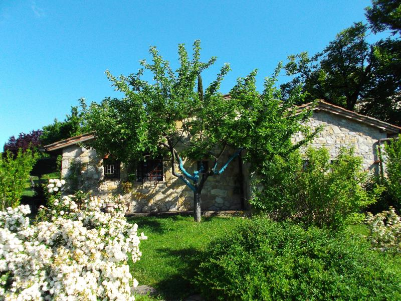 Romantic hideaway in the heart of Chianti, holiday rental in Radda in Chianti