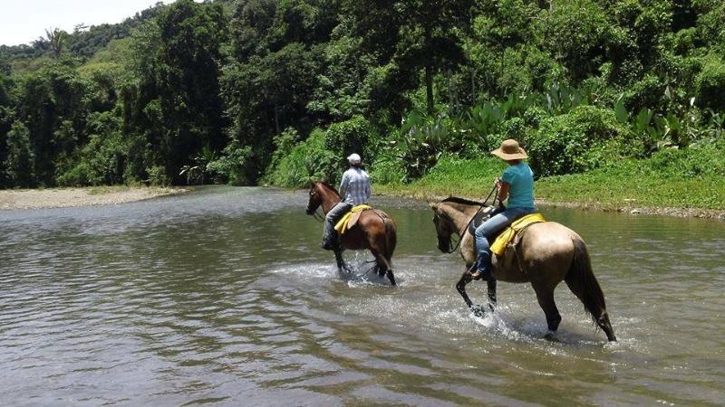 Équitation tournée avec notre ami Andrea !