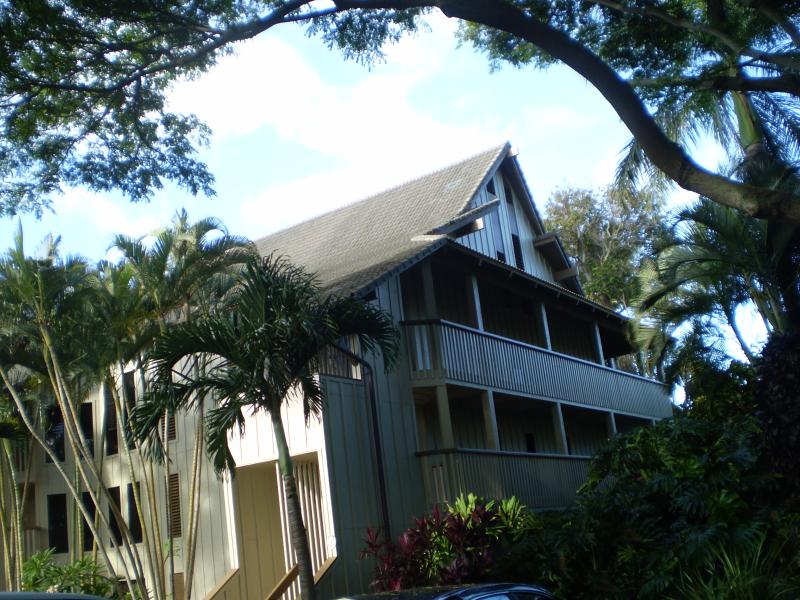 Plantation style buidlings - old Hawaiian charm.