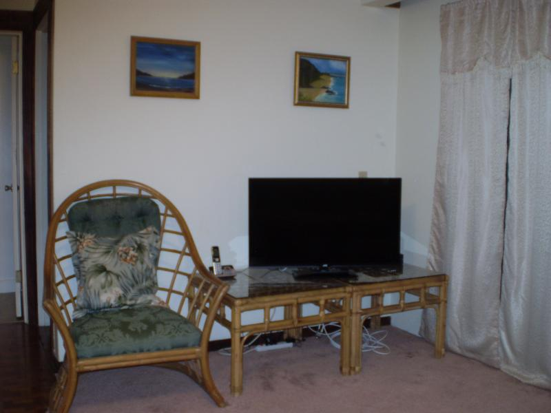 Living room television