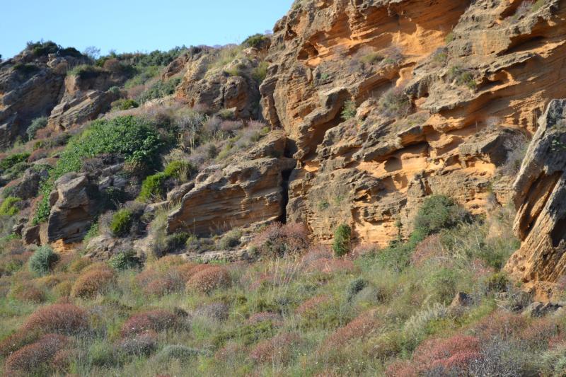 Antiche cave di tufo nelle vicinanze