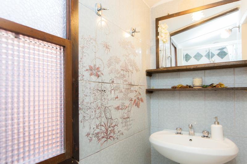 Bathroom washbasin, shower no bidet