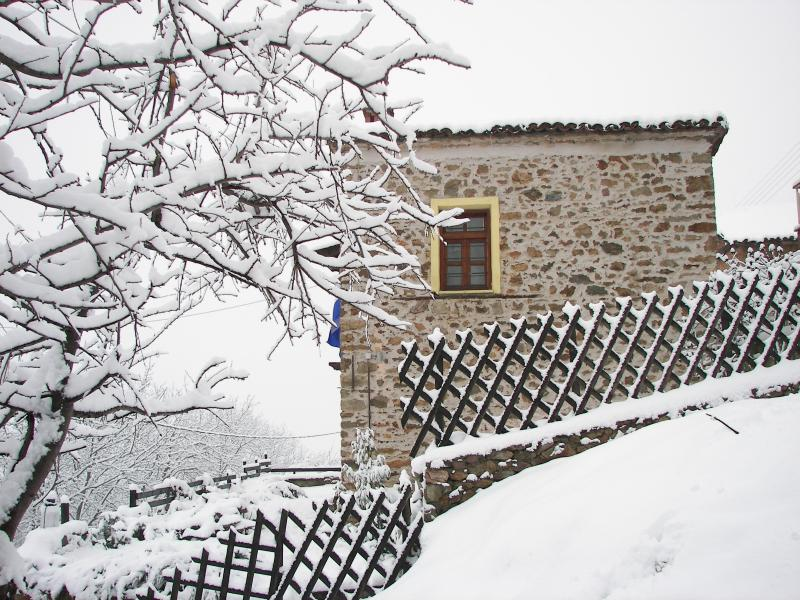 Vitsi Lodge, holiday rental in Kastoria Region