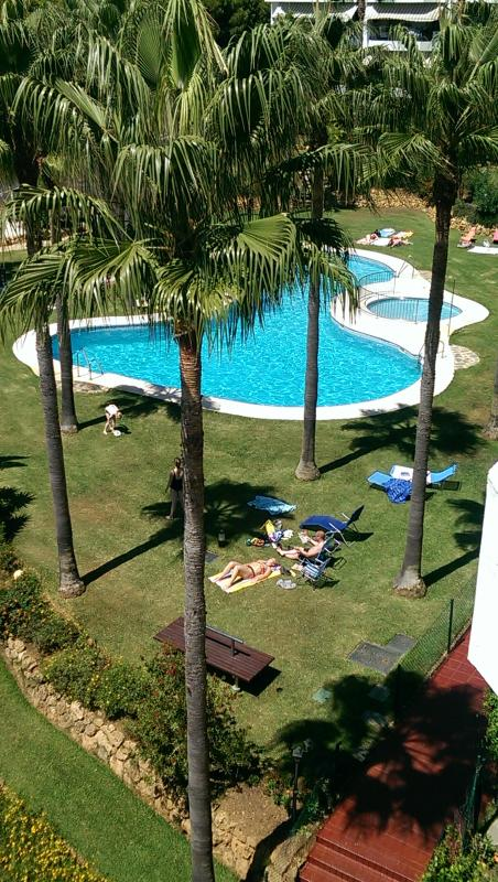 2nd Mi Capricho Pool