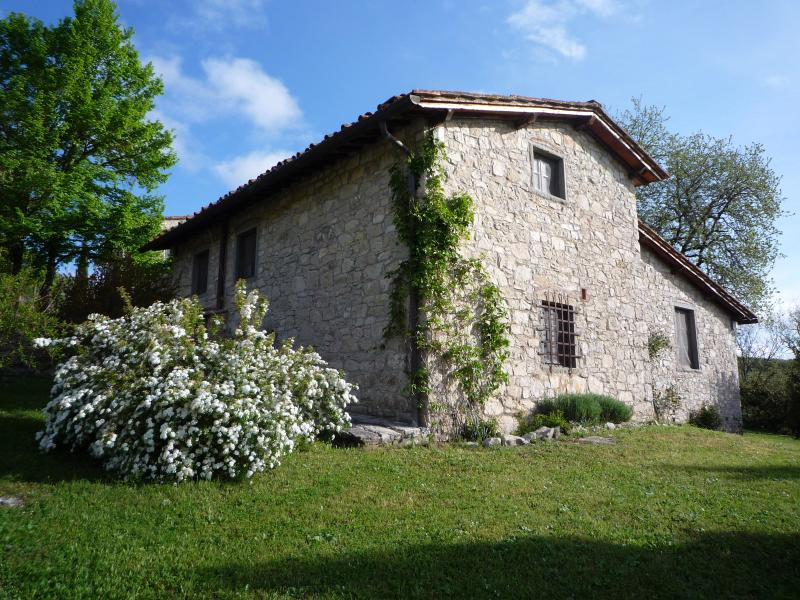 A heaven amidst cypress trees and olive groves, holiday rental in Radda in Chianti