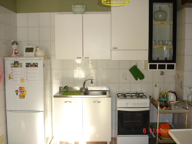The kitchen with its appliances.