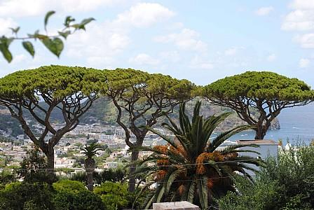 Casamicciola Terme Villa Sleeps 5 with Air Con - 5228708, holiday rental in Casamicciola Terme