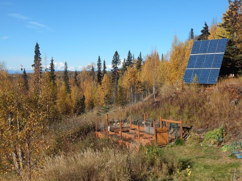 The outdoor garden after harvest, the solar panels and Denali in the background.