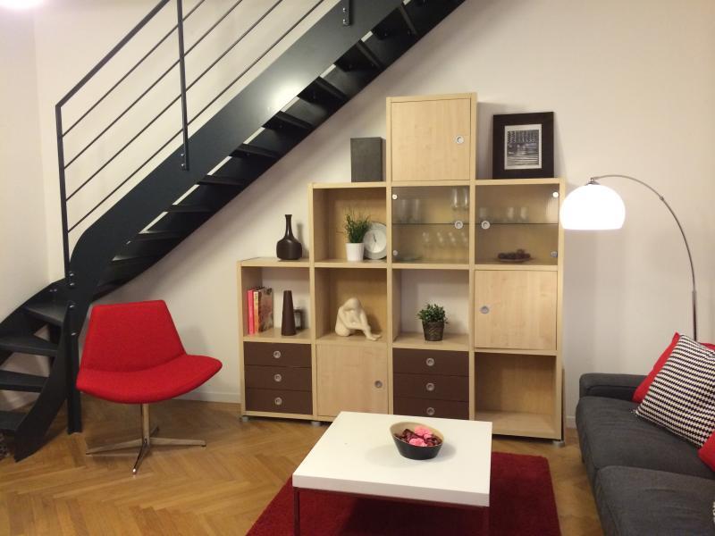 Grand appartement rénové avec terrasse, holiday rental in Lyon