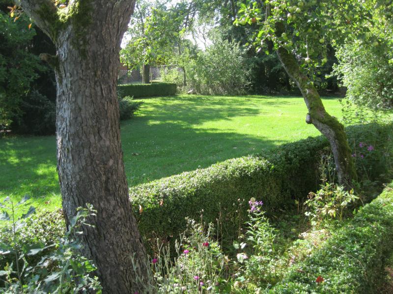 jardín delantero, otro ángulo