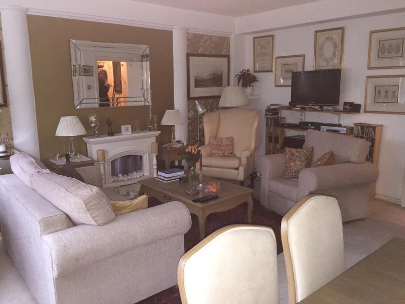 The elegant drawing room