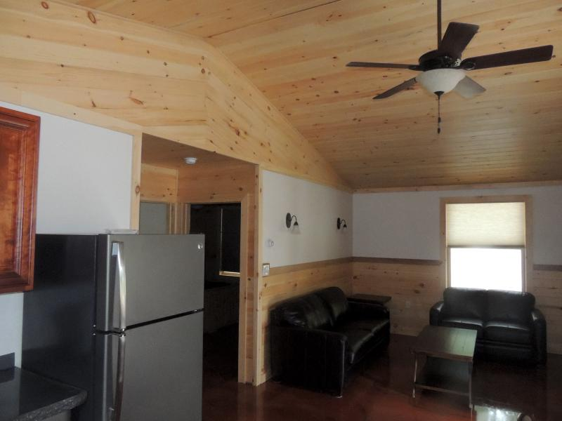 Cayuga Lake Cabin, Cayuga Wine Trail, Finger Lakes, vacation rental in Romulus
