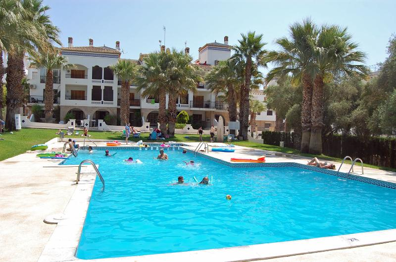 Communal pool for the Villamartin Plaza.
