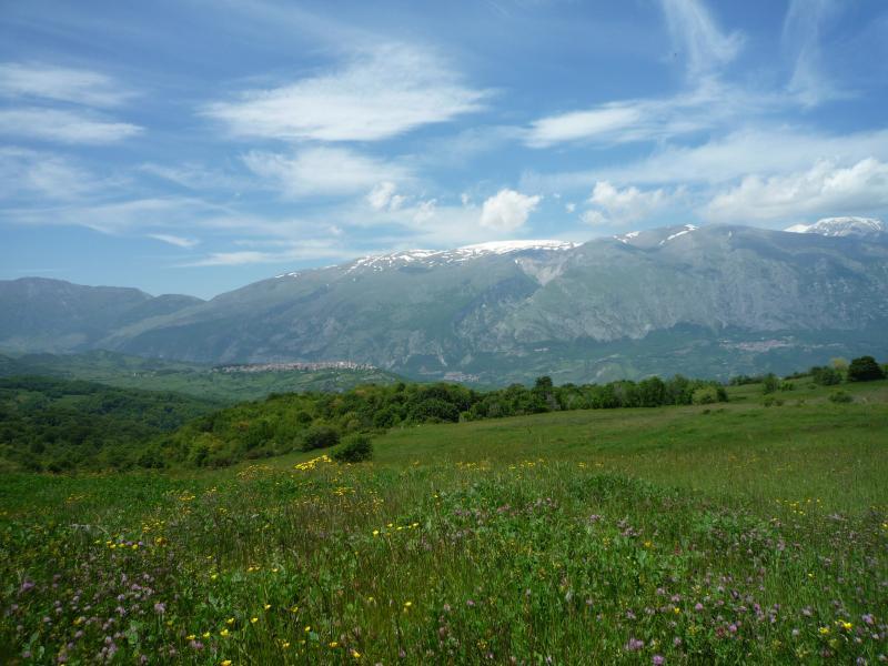 Wild Abruzzo