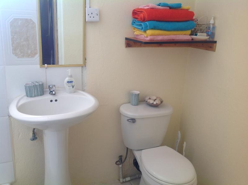Bathroom, ground floor apt.
