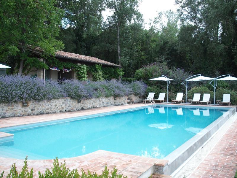 Pool und Lavendel-Büsche