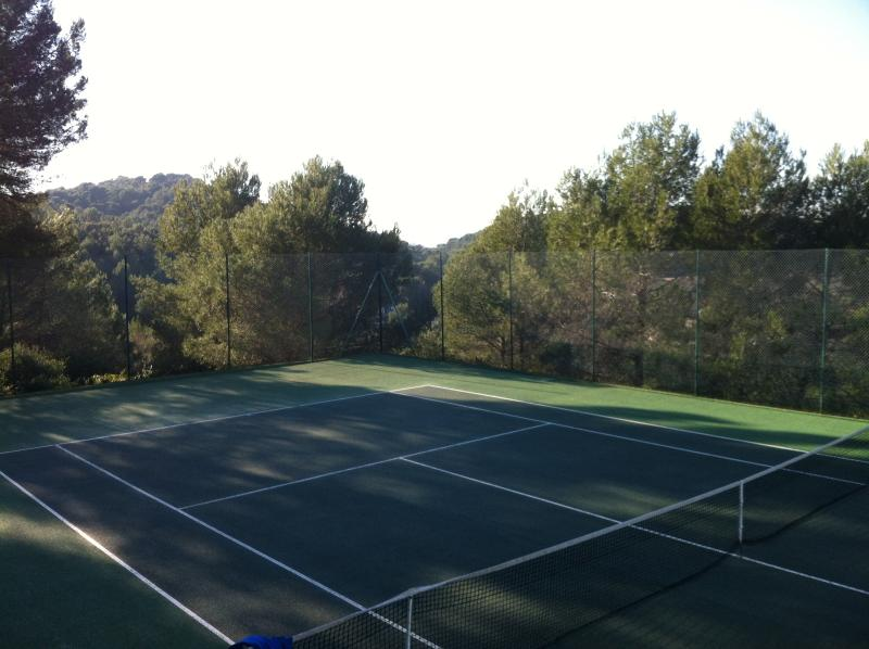 One of the 4 tennis courts open all year round.