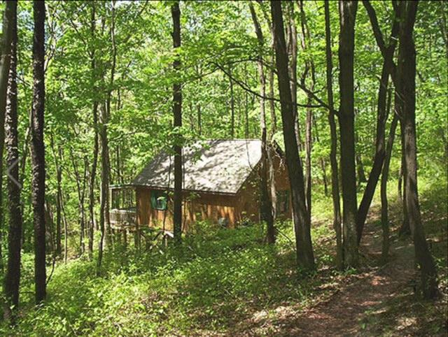 Secluded cabin with Hot tub to enjoy Mother Nature