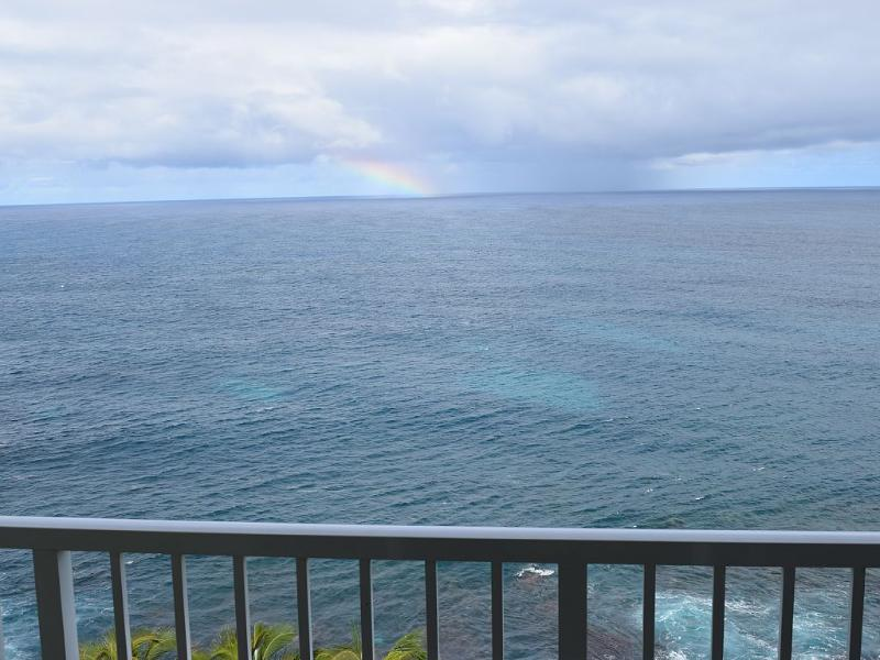 180 degree ocean frontage from 25+ foot long balcony