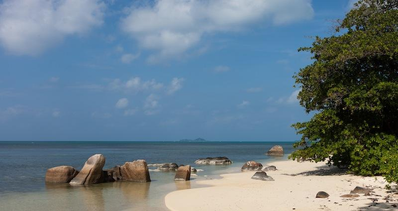 St Saver beach, only 50 meters away