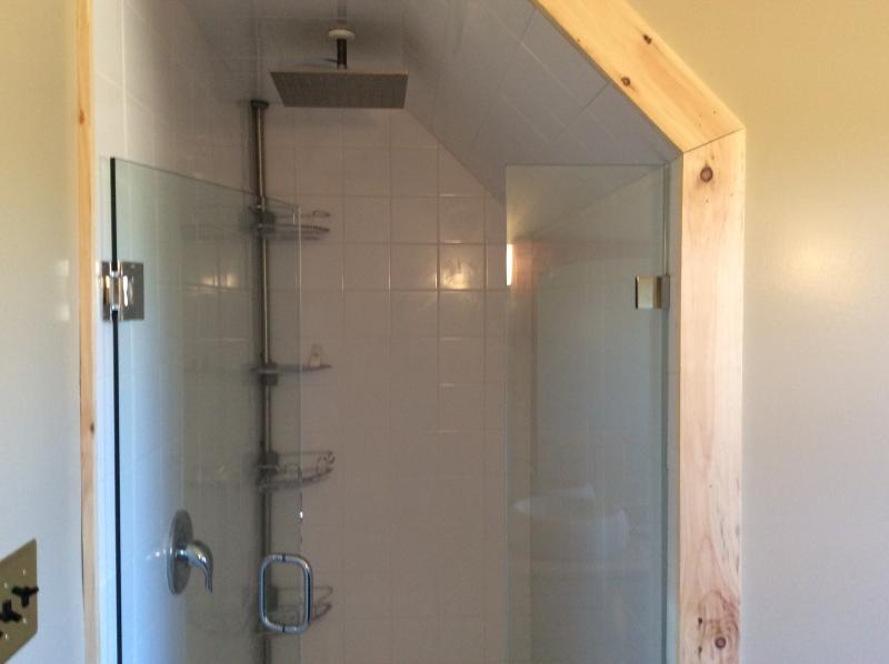 Master Shower -- 12' Rain Shower
