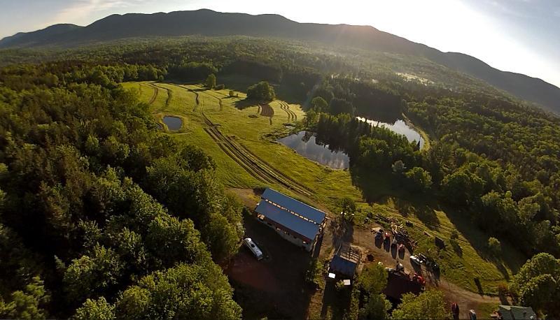 Organic Farm, House, Barn Event Rental, holiday rental in Braintree