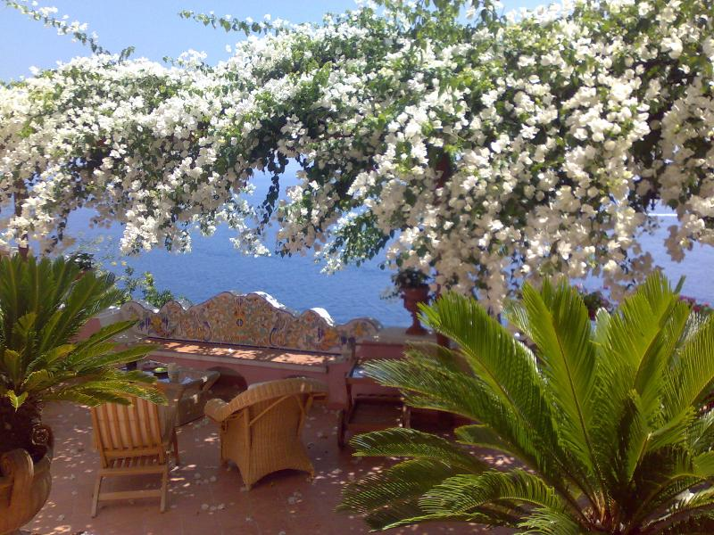 Villa Sunshining atrium - Terrace with white bouganvillea.