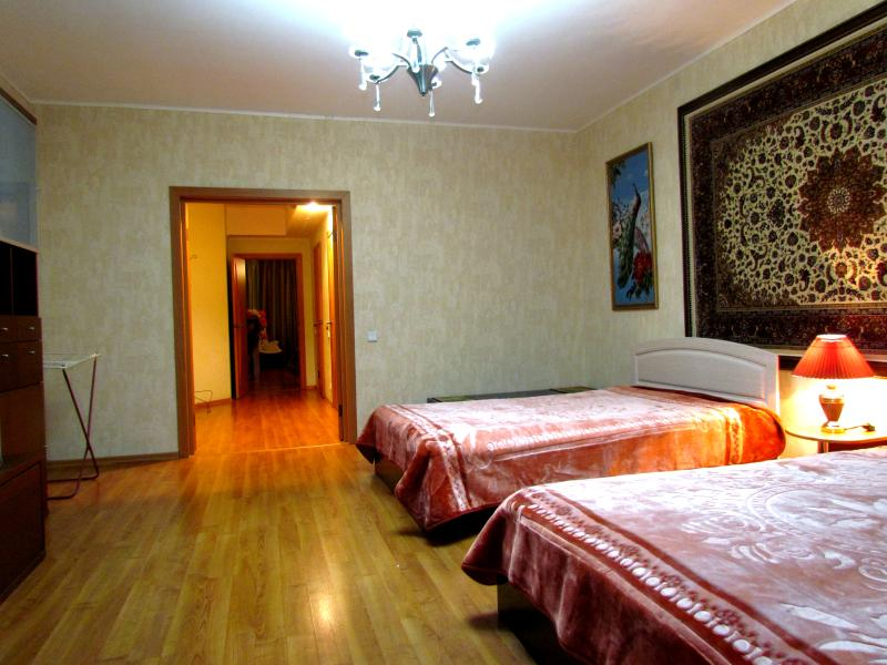 Superior apartment 47, holiday rental in Novosibirsk Oblast
