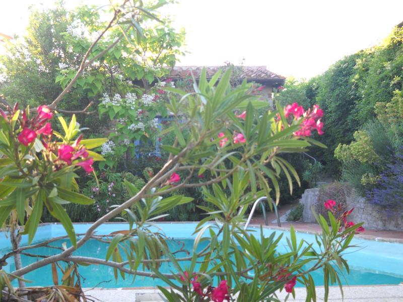 Villa La Rogaia - the pool